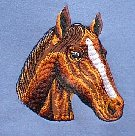Detail of Sweatshirt Design - Large Horse Head Applique